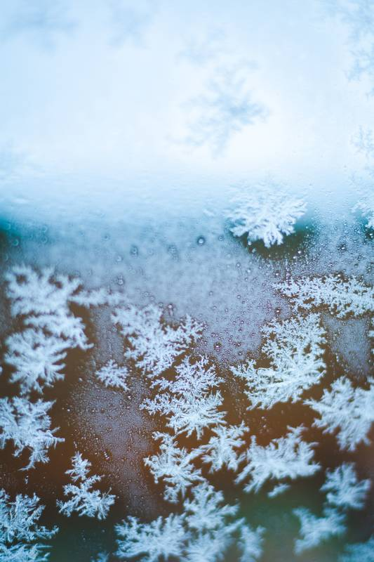 close-up photography of snowflakes