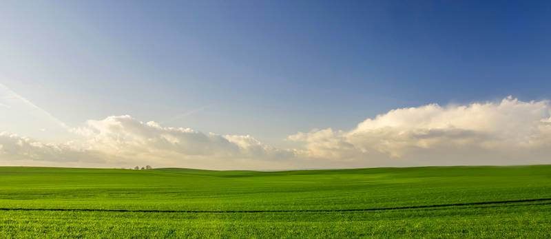 agriculture-countryside-crop-cropland-388415_edited-2-me.jpg