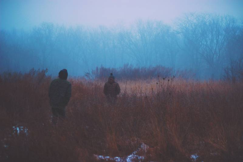 Cold evening in a field